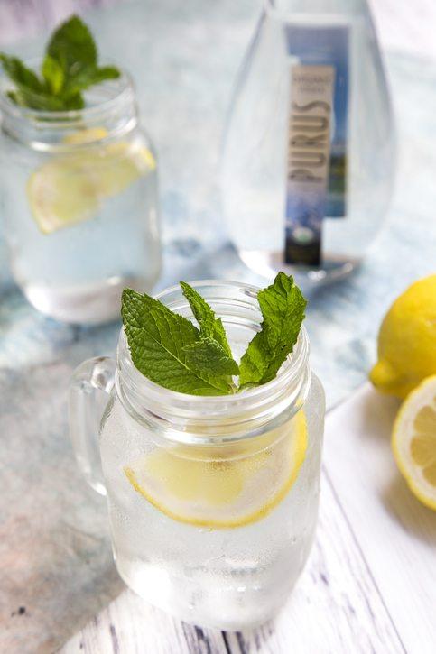 Purus Lemon Aid Vertical