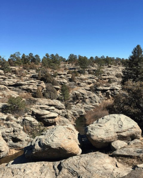 5 Favorite Hikes Less than an Hour from Denver
