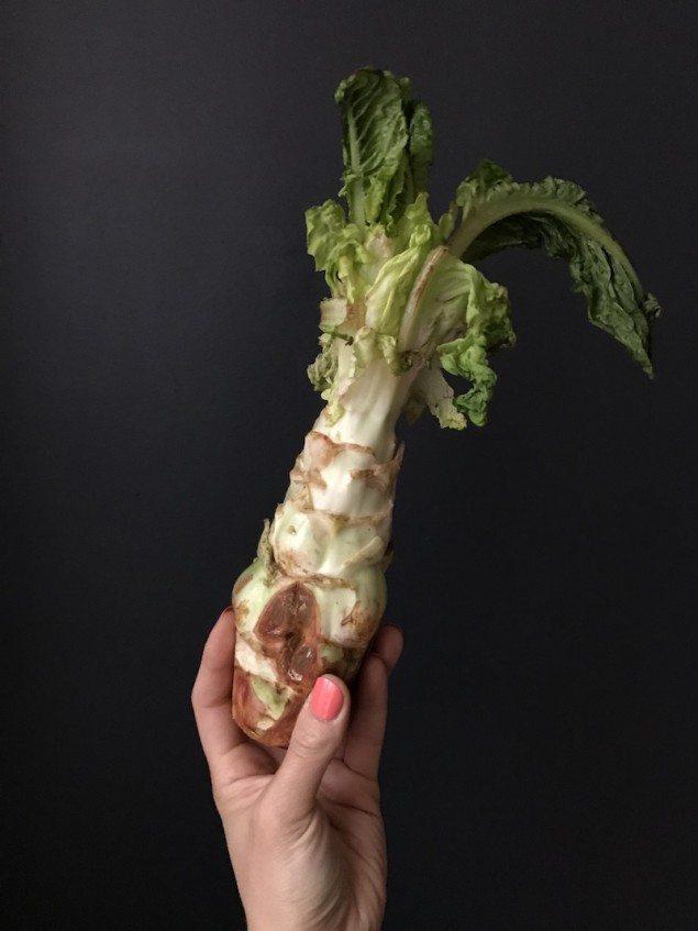 Celtuce Spring Vegetable Braise