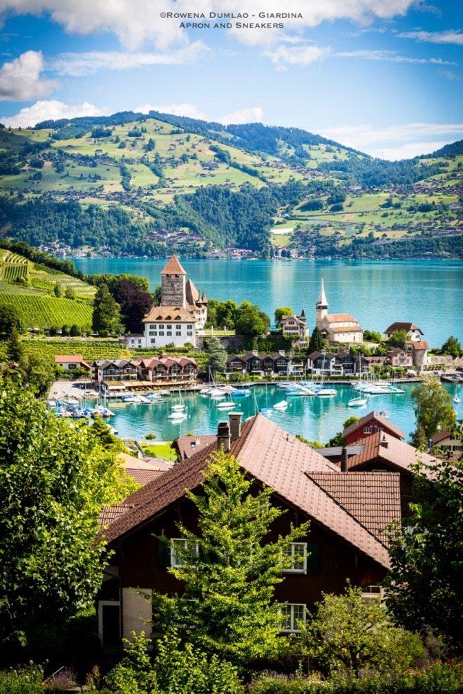 Spiezer Winery in Switzerland